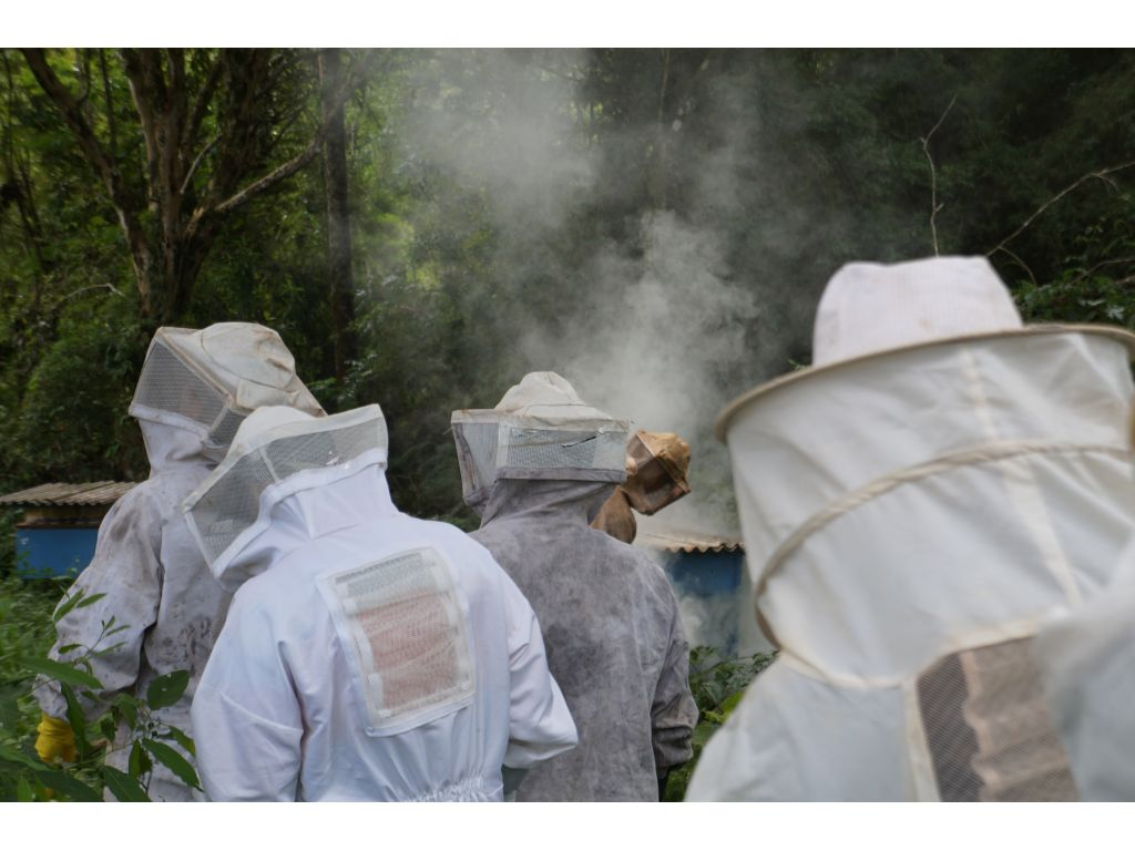 Secretaria de Agricultura e Sindicato Realizam Curso de Apicultura - Galeria de Imagens