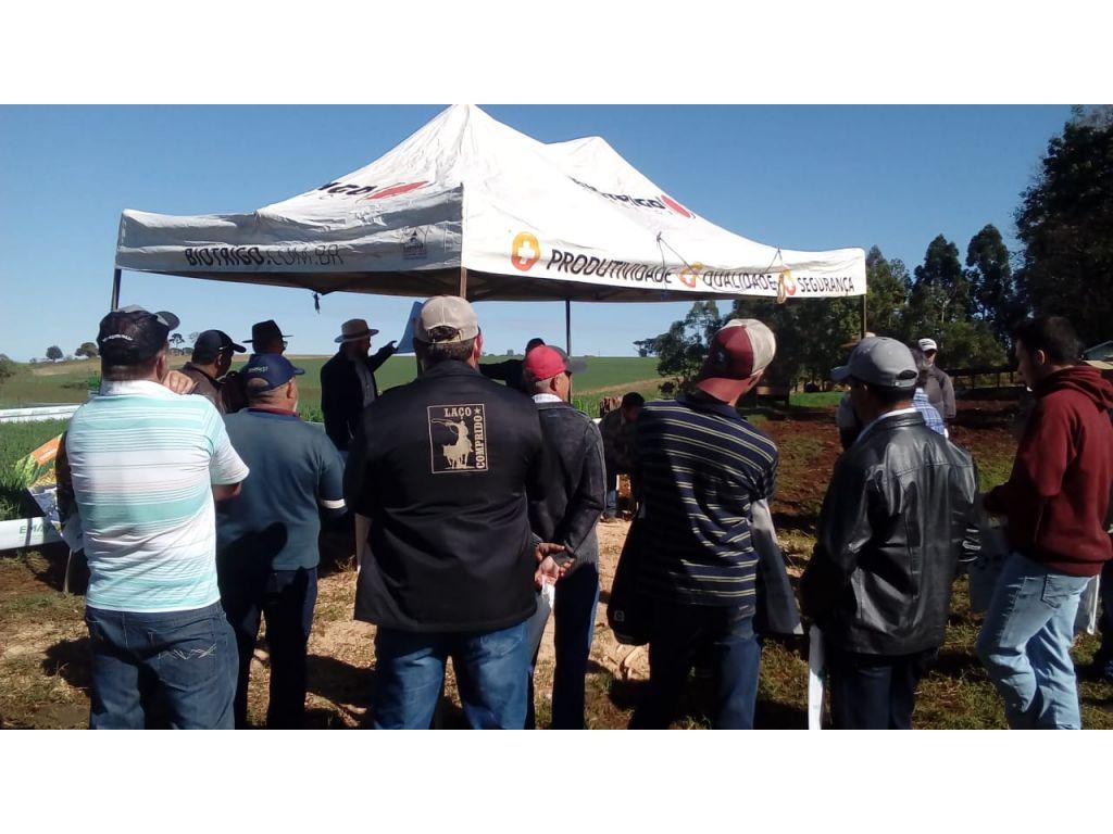 Agricultores Cantuenses Participam do Dia de Campo de Bovinocultura de leite em Campina da Lagoa - Galeria de Imagens